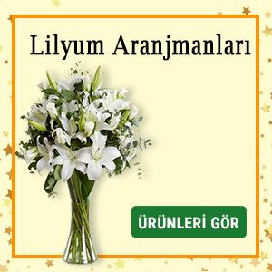 lilyum zambak