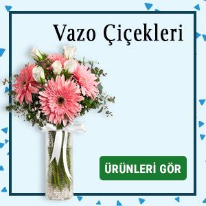 vazo çiçekleri