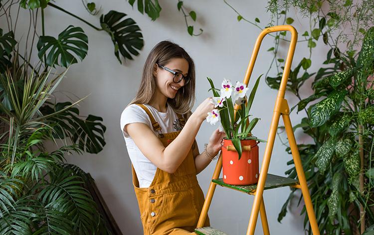 çiçek bakımı